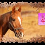 месяц лошади 2018