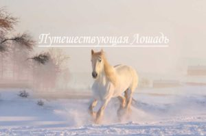 Путешествующая Лошадь
